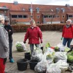 Resultatet af affaldsdag 2016 i Langå